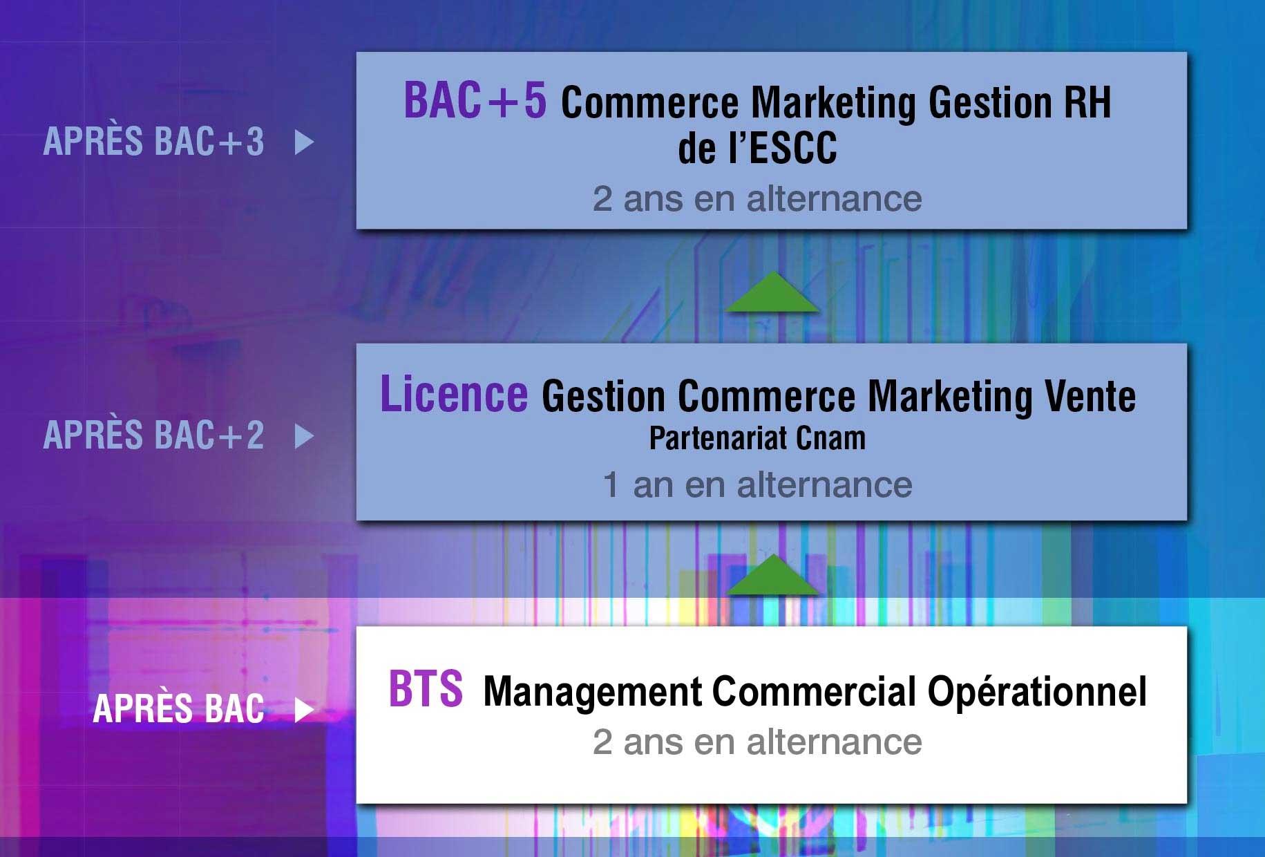 ESCC-Cursus-BTS-schema