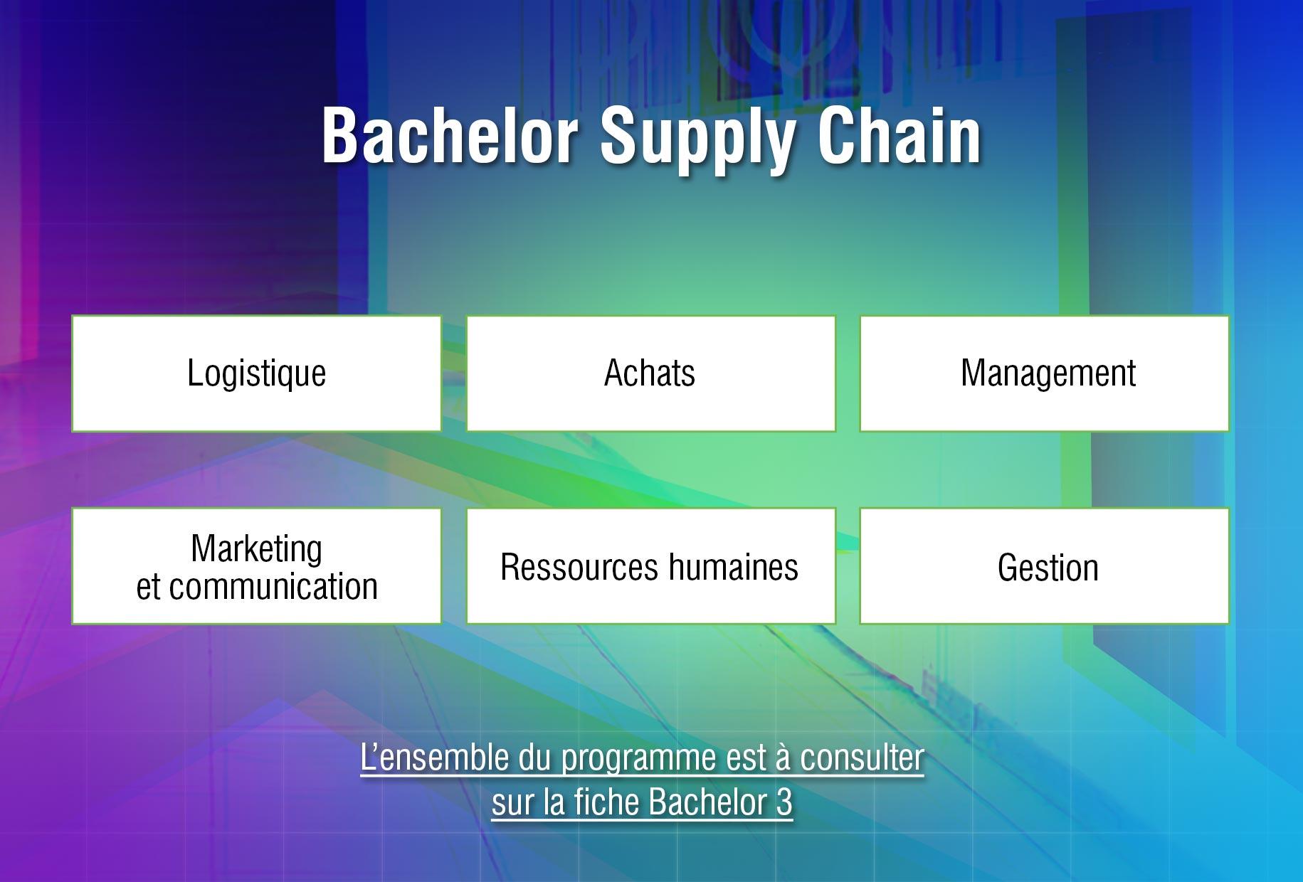 ESCC-Bachelor-Programme